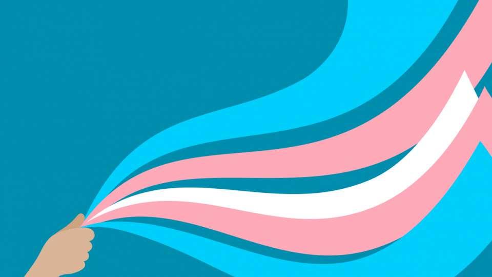 Владата го утврди Предлог-законот за признавање на родовиот идентитет на транс-лицата – Од ЛГБТИ заедницата очекуваат и Собранието да го усвои